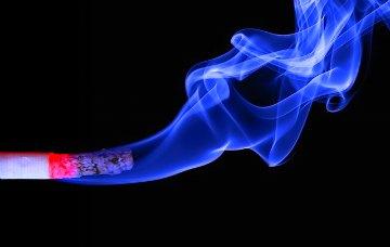 smoking in the top 10 health risk factors